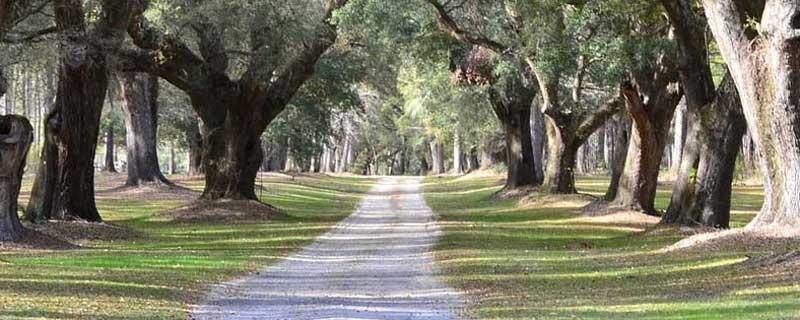 Build Affordable Homes On Your Land South Carolina